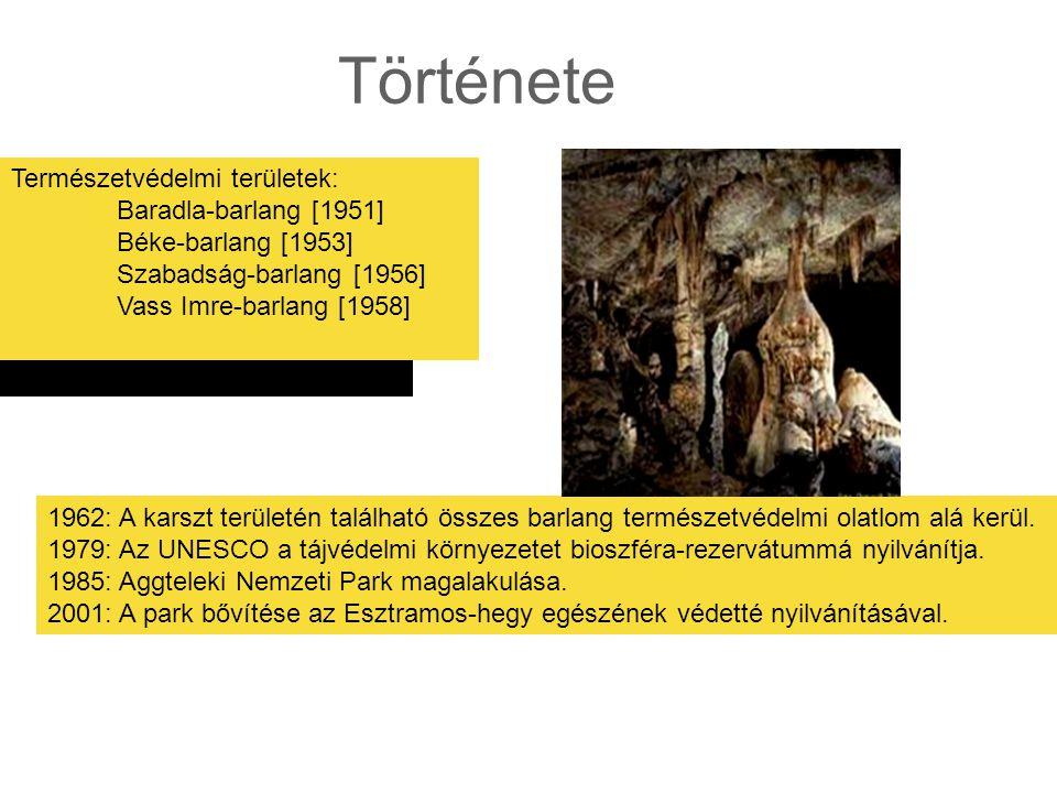 Története Természetvédelmi területek: Baradla-barlang [1951]